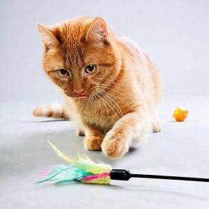 comprar juguetes para gatos