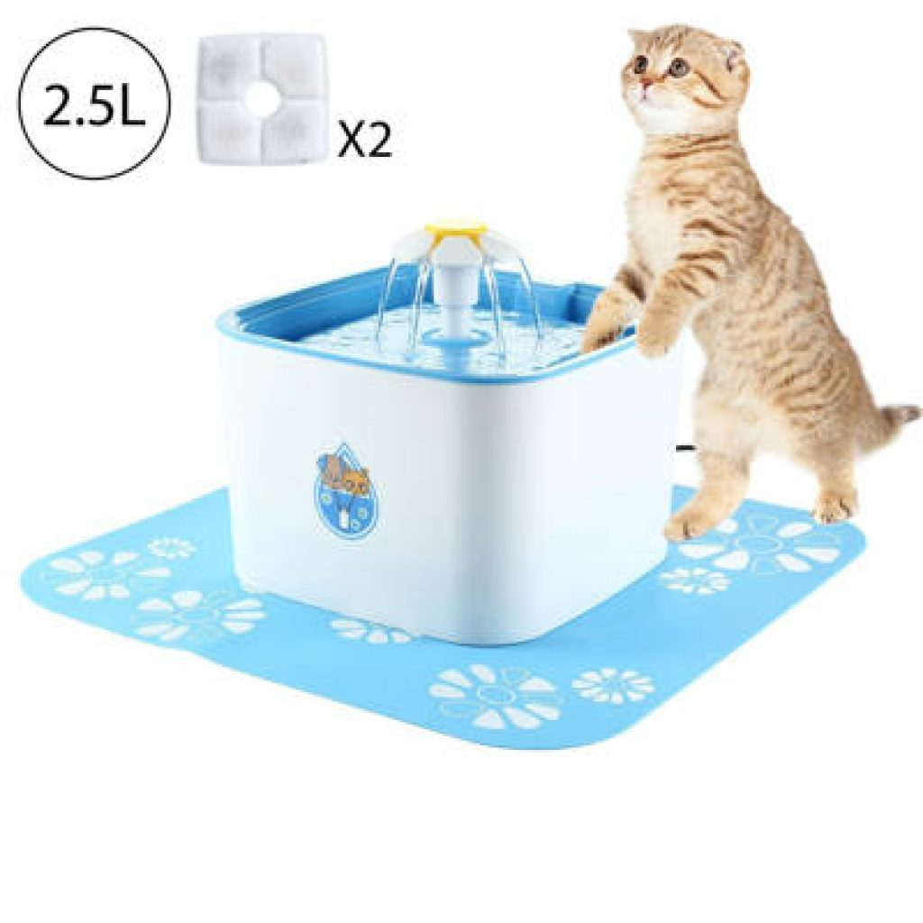 dispensador de agua para gatos