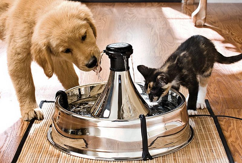 Fuente para mascotas de acero inoxidable